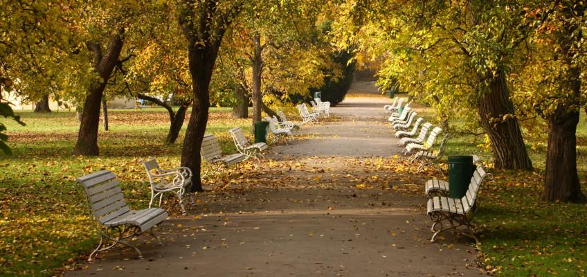 Na podzim bývá na posilování imunity pozdě, lepší je začít už teď