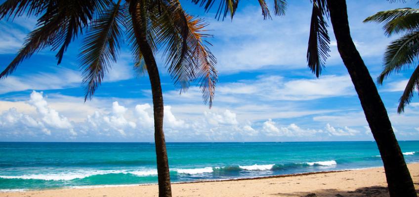 Letní dovolenou se vyplatí plánovat již teď