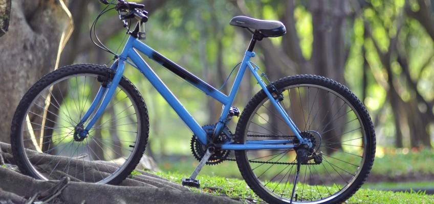 Češi stále více milují jízdu na kole