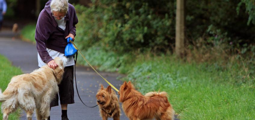 Cvičení starším lidem pomáhá zpomalit stárnutí a přispívá kudržení vitality