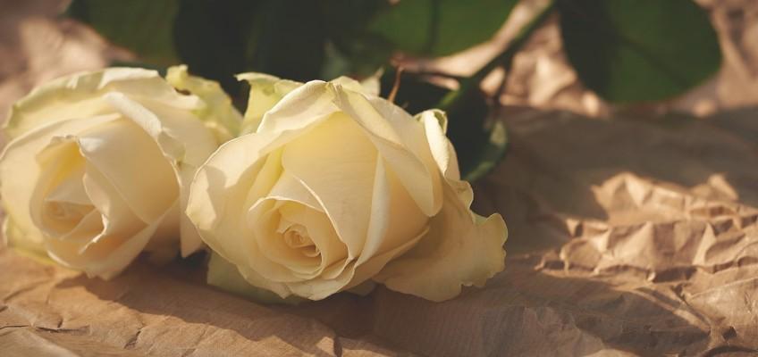 Zažijte romantiku jak zdob krále Klacka
