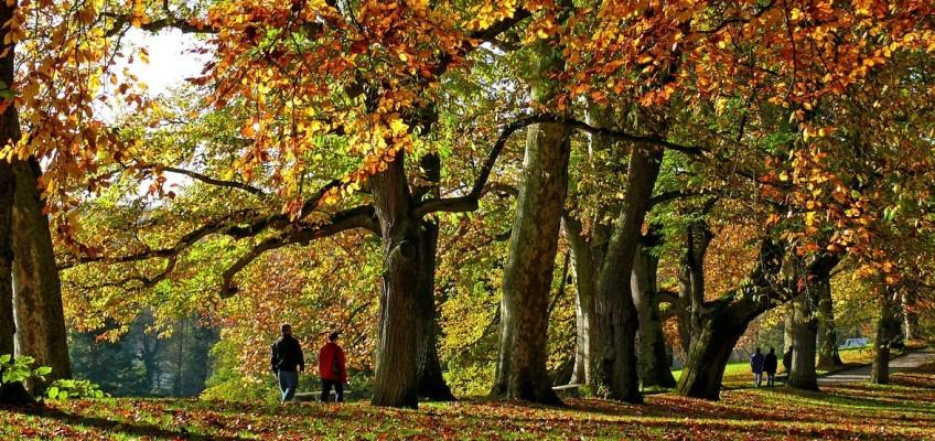 Dejte si pozor na tělo vyčerpané podzimním splínem!