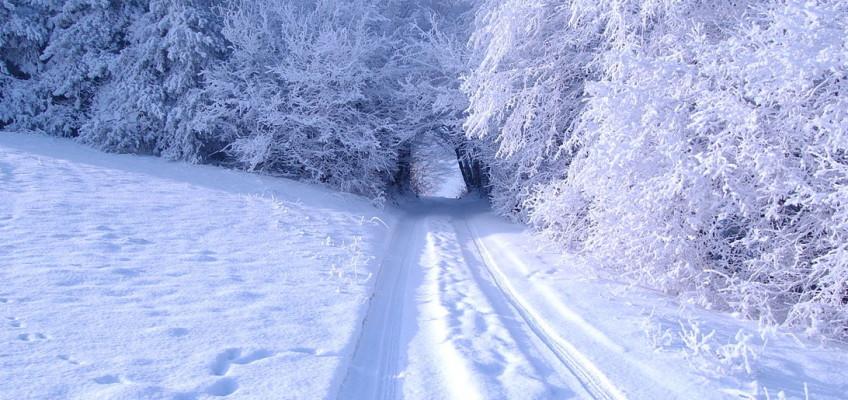 Co nás letos v zimě čeká?