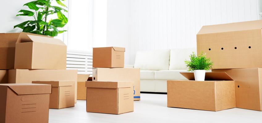 Úložné krabice a boxy zatočí s nepořádkem a vtisknou interiéru osobitý styl