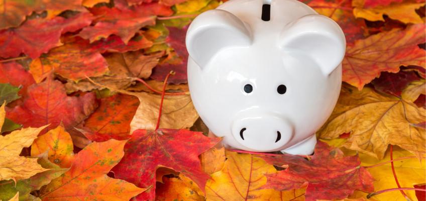 Jak se vypořádat s nadcházejícími podzimními výdaji?