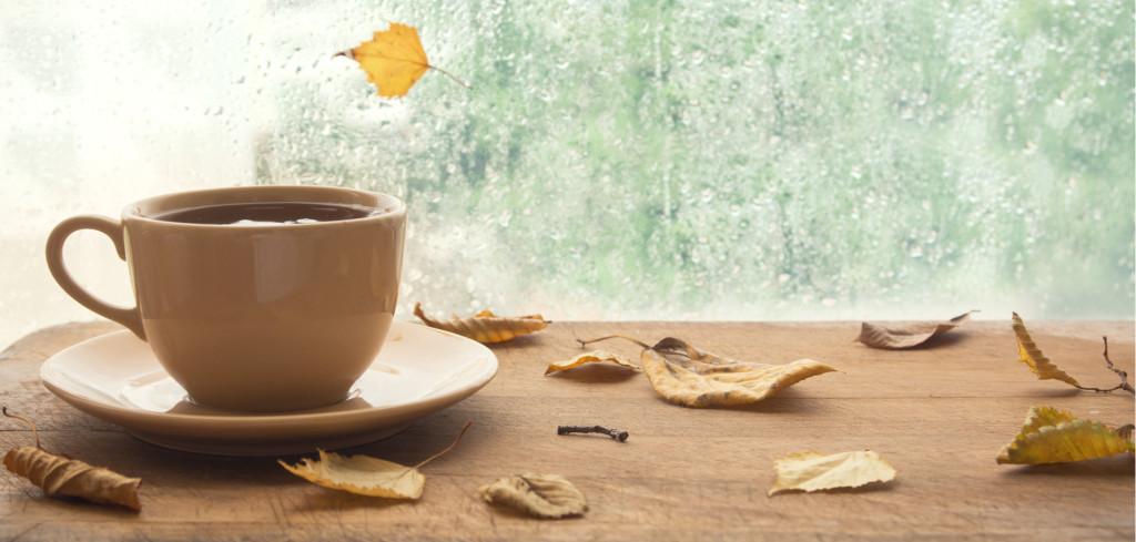 Nevlídný podzim klepe na dveře. Kam vyrazit o víkendu, když nám počasí nepřeje Creative Commons (shutterstock.com)