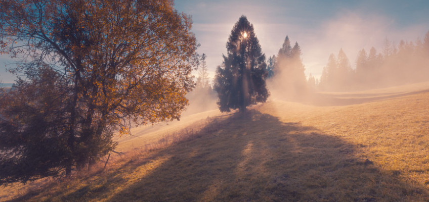 Využijte podzimní procházky pro kreativní tvoření s dětmi